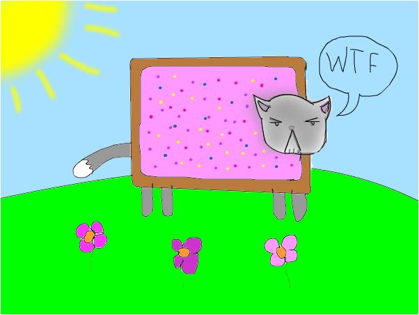 the nyan cat