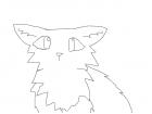wierd bad cat