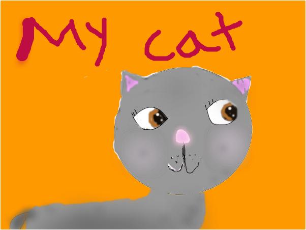 my cat cosette