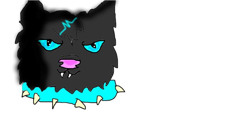 Random cat named fears :)