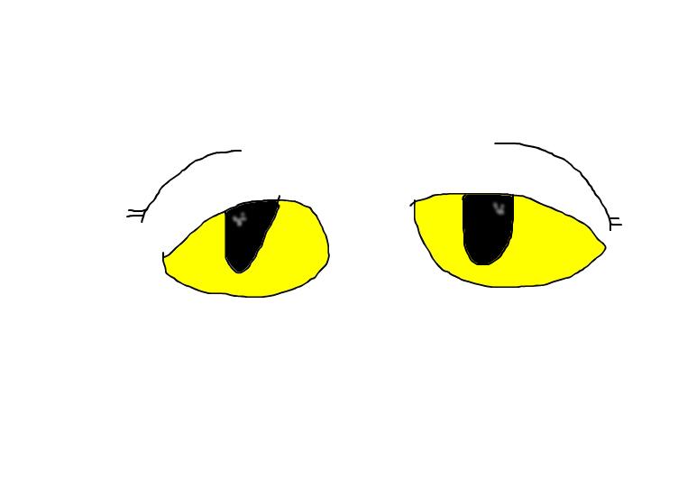 Curios eyes