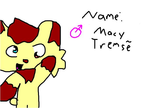 Macy Tremse