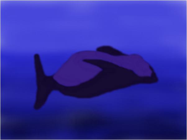 Random Whale