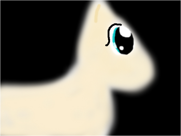 Pony without hair