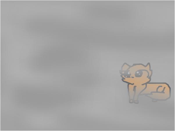 cat in fog