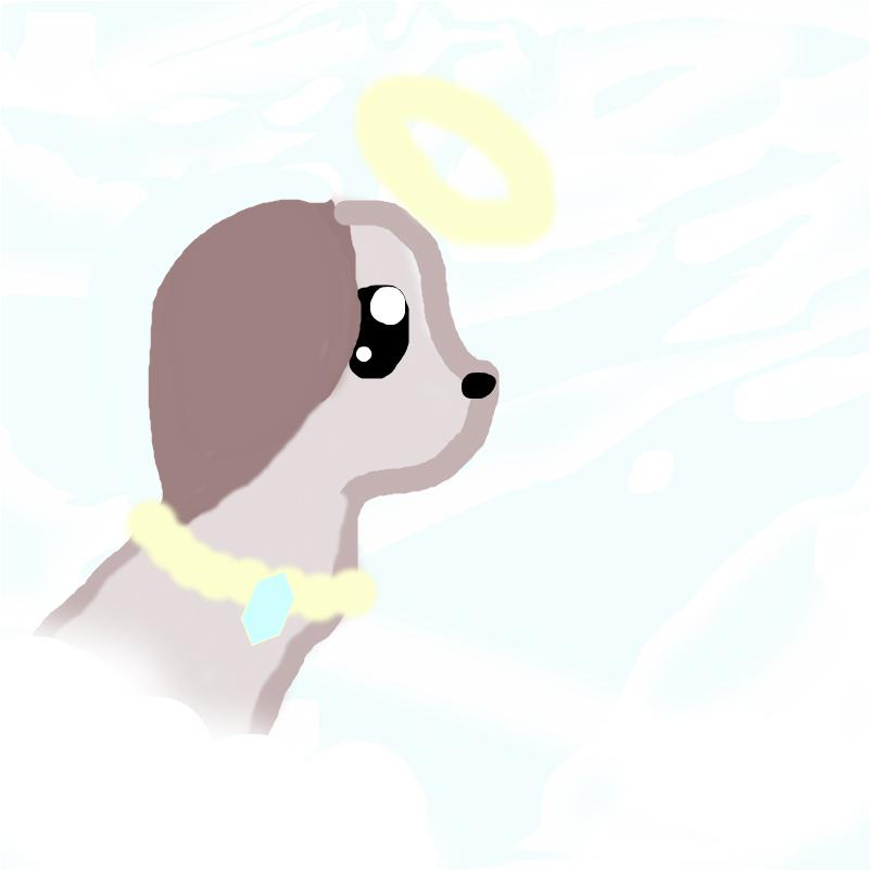 angle puppy