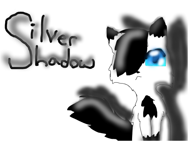 my character, Silvershadow a.k.a Shadow