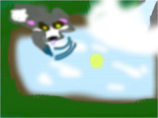 A wolf drinking near a waterfall