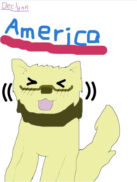 America cat: Hetalia