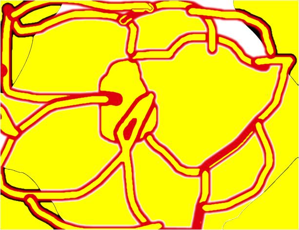 inside body