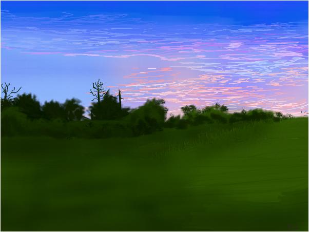 Backyard Sunset, for Denise