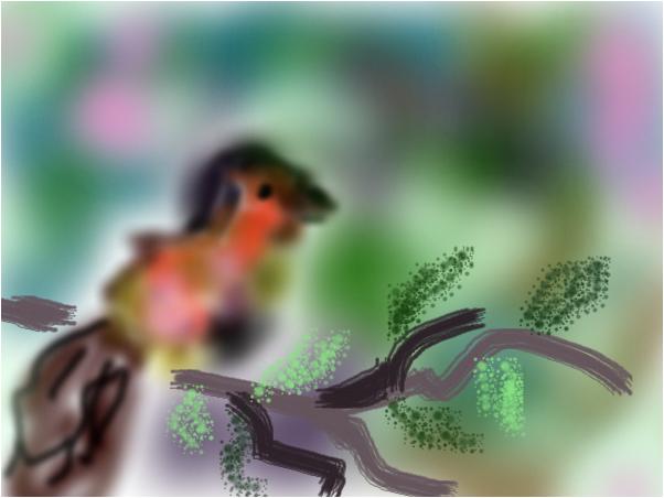 The bird behind