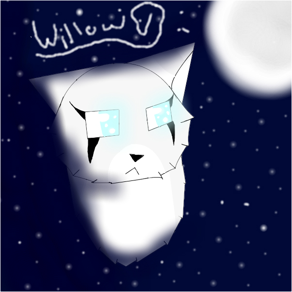 Looking to Starclan