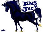 Horse Black Jack
