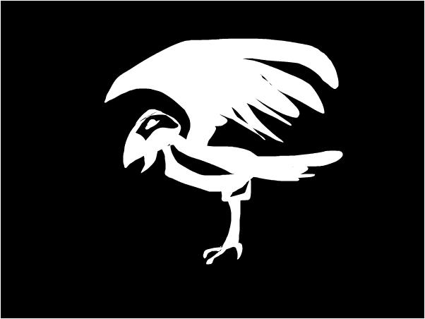 look.A crow~Crow
