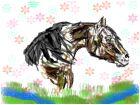 Spring Horse :)