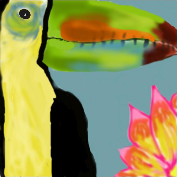 Toucan flower