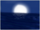Night ocean view