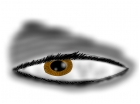 Dark Human Eye