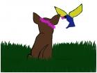 unfinished dog