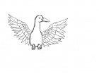 uncolored duck