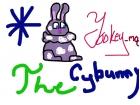 Yookey