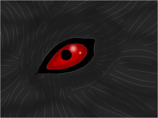 Red Wolf Eye