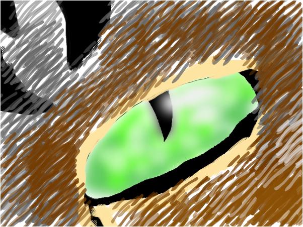 Cat eye.