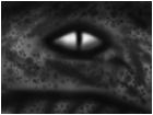 B&W eye