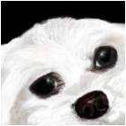 "Our dog ""Pretty"""