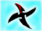 Ninja Star!!!