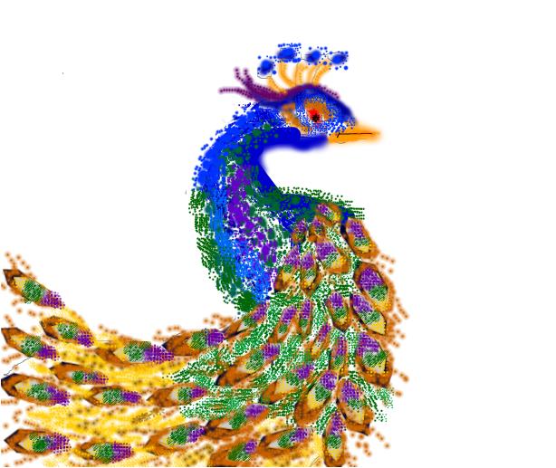 golden peacock