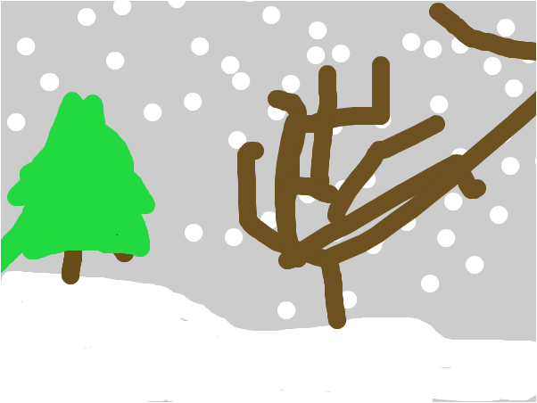 diego snow fall down