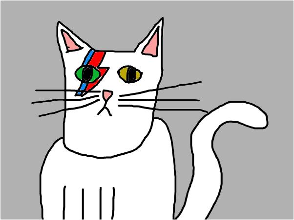 Bowie Cat
