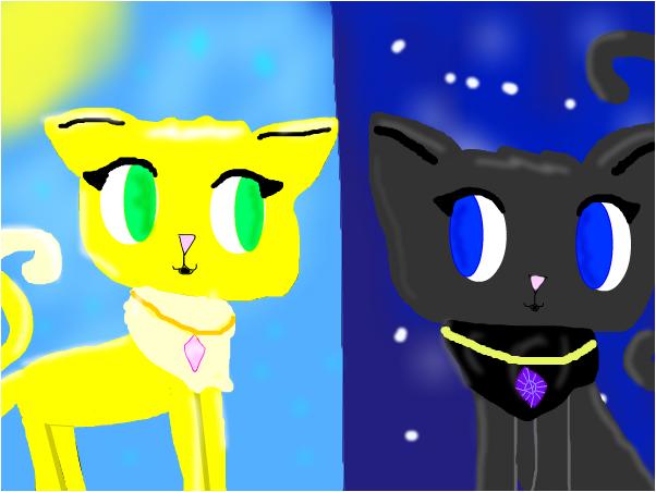 Dream cats
