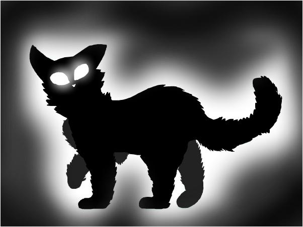 black cat Senki
