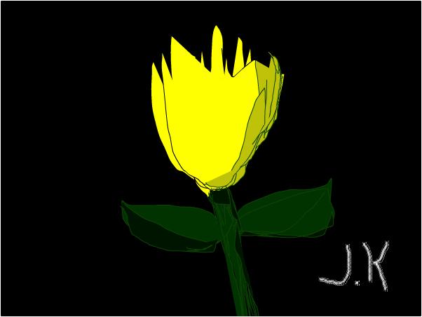 The yellow Bulb