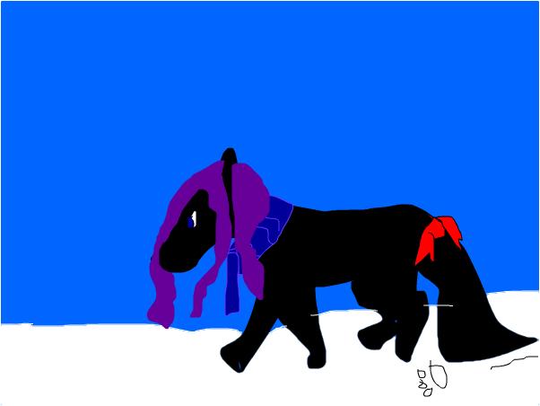 wolf on snow