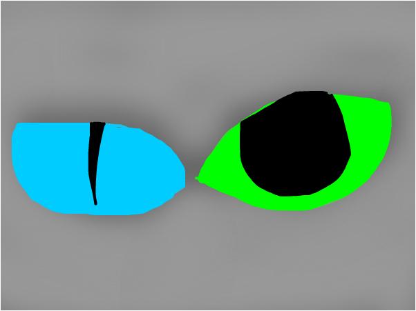 cat ocs eyes
