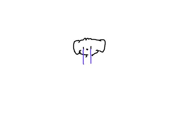Should I draw my dog?