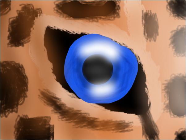 Глаз ягуара