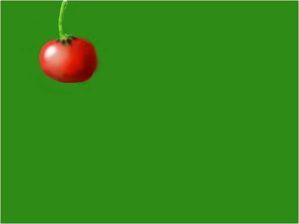 tomato thing
