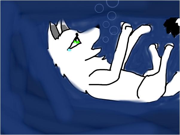 white fur drowning