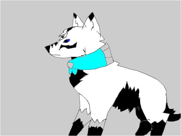 Wolf online account