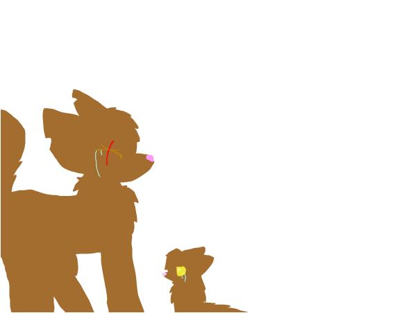 #SaveFrisky&Kitten