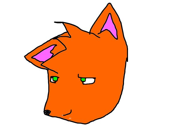 WARM UP (Fox)