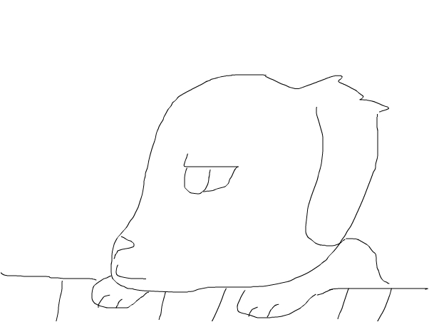 Quick 50 sec dog sketch