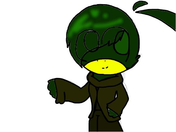 duck ((dhmis))
