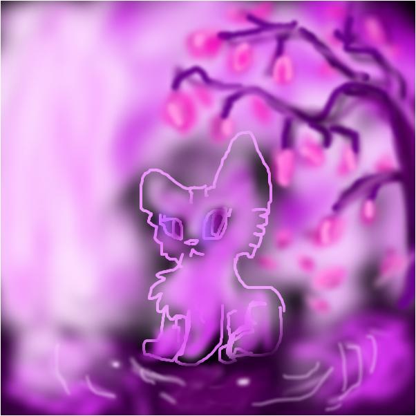 a kitten in the legendary forest