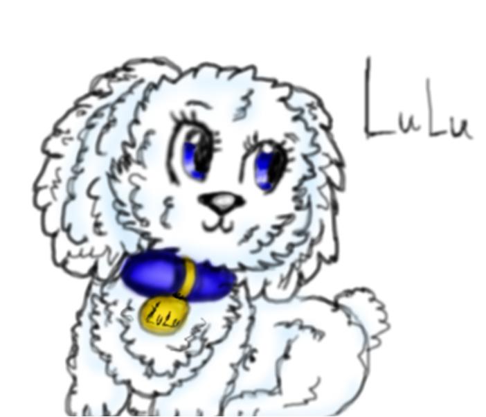 perritos lulu